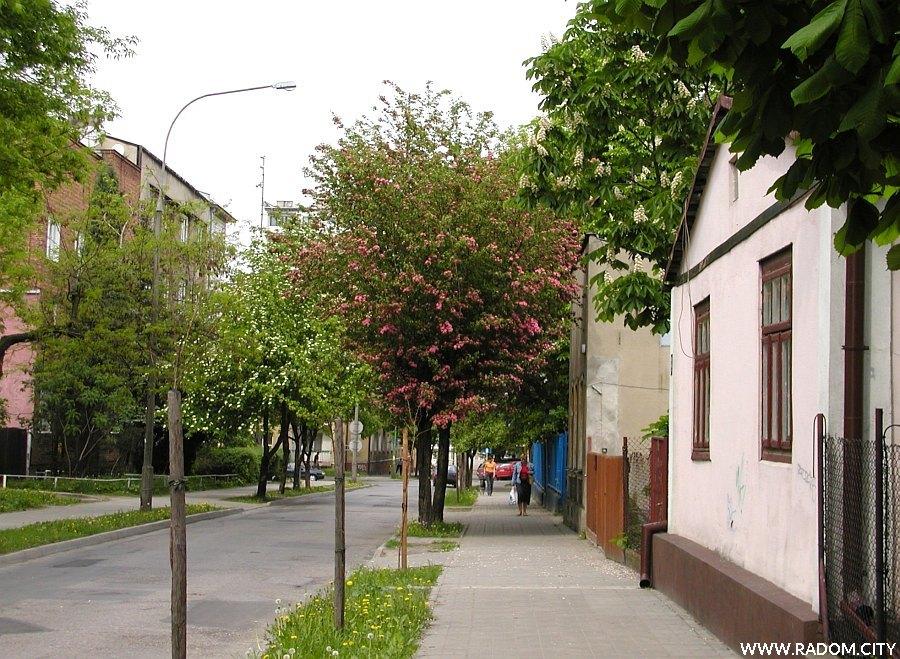 Radom. Ulica Staszica, widok od strony Urzędu Miasta w kierunku Kelles-Krauza.
