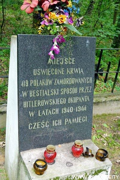 Radom. Pomnik w Lesie Kosowskim.