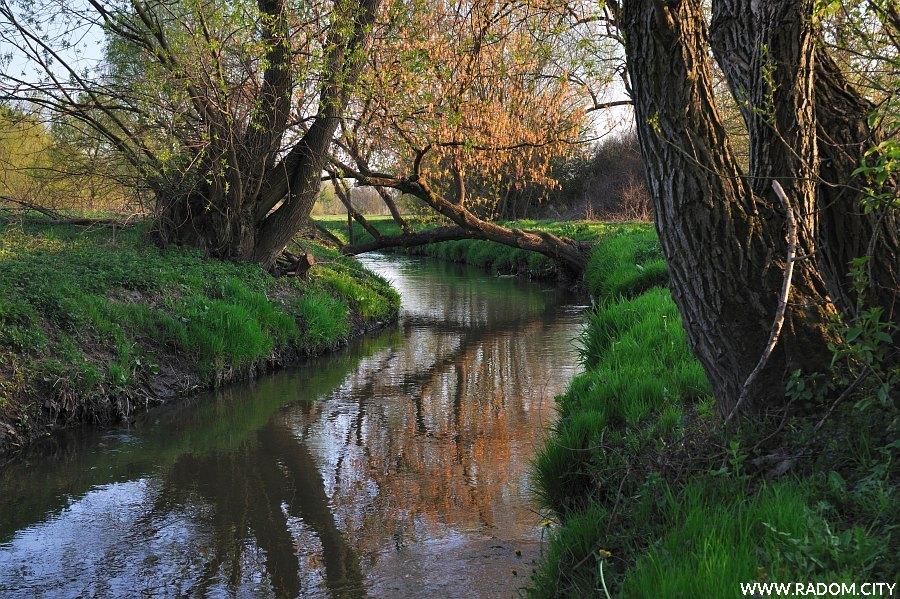 Radom. Rzeka Mleczna - widok od strony mostu na Ofiar Firleja.