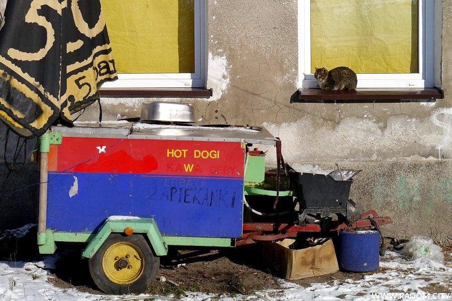 Radom. Wózek i kot - ul. Żytnia.