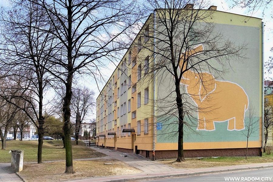 Radom. Ulica Sowińskiego 13 - słoń na ścianie bloku.