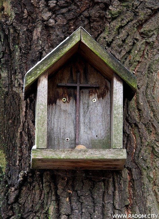 Radom. Kapliczka - ul. Okrężna/drzewo.