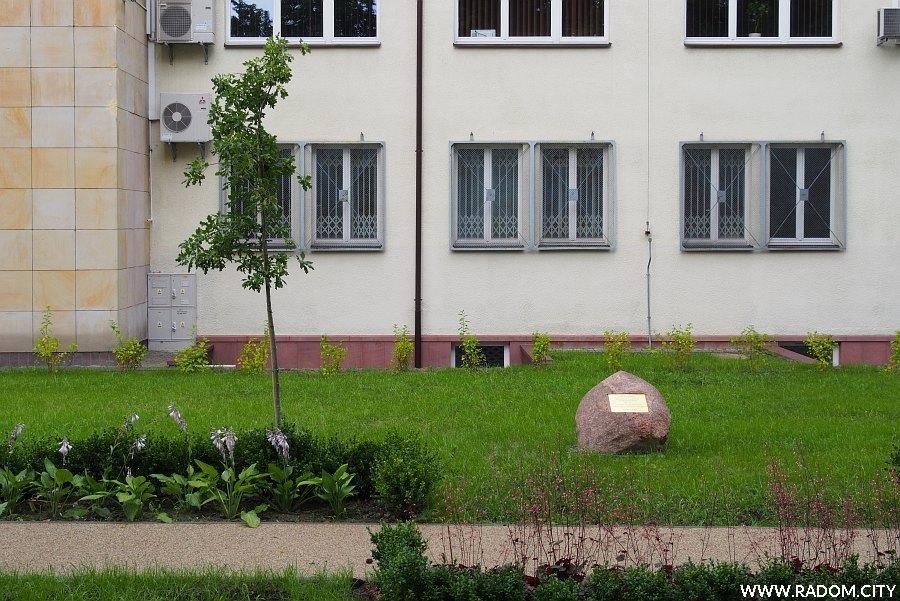 Radom. Dąb Wolności przy budynku Lasów Państwowych.