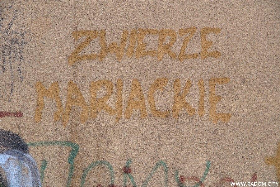 Radom. Napis na bloku przy Śniadeckich.