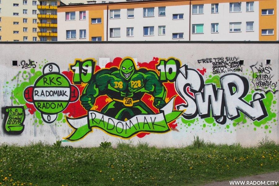 Radom. RADOMIAK - graffiti na garażach Górnicza/Rapackiego.