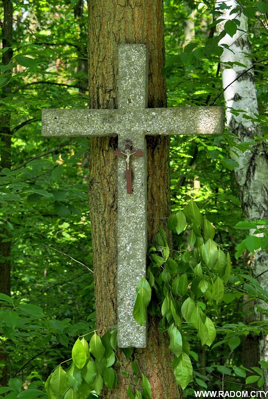 Radom. Krzyż - Podleśna.