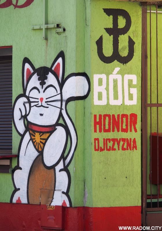 Radom. Graffiti - Struga.